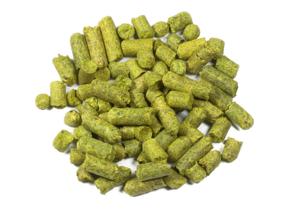 Brewers Gold humle 50g